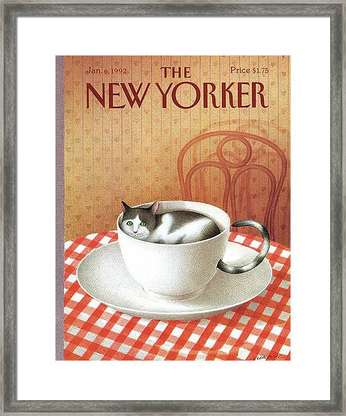 Cat Sits Inside A Coffee Cup Framed Print