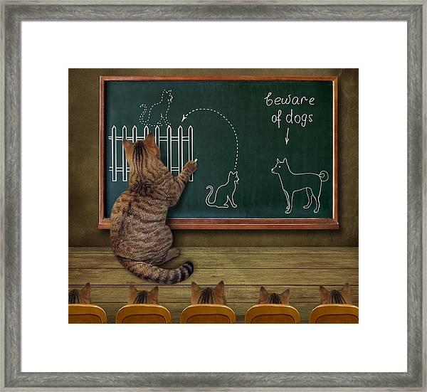 Cat Teacher And His Pupils... :) Framed Print