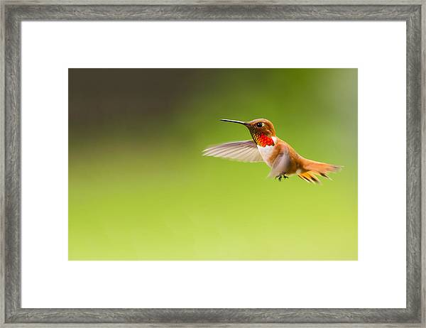 Catching Motion Framed Print