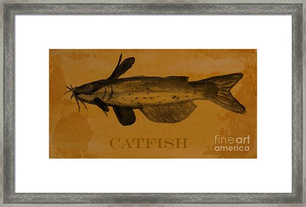 Catfish Plaque Framed Print