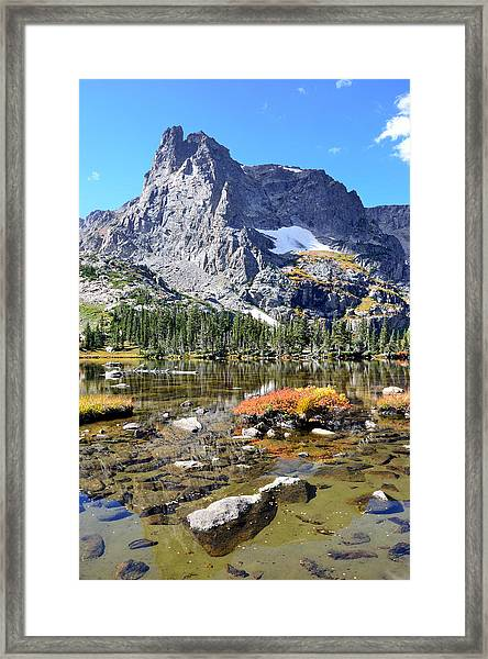 Cathedral In The Park-v Framed Print