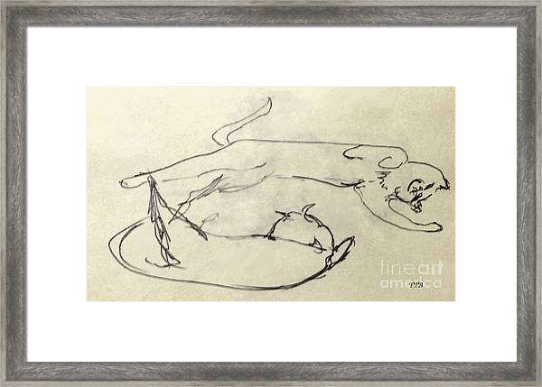 Cats A-courting Framed Print