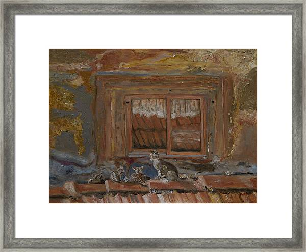 Cat's Hanging Out Framed Print