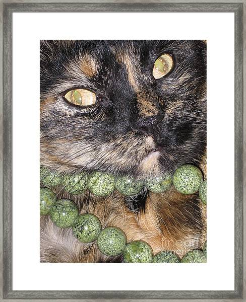 One In A Million... Beauty Of Cat's Eyes. Hello Pearl Collection Framed Print