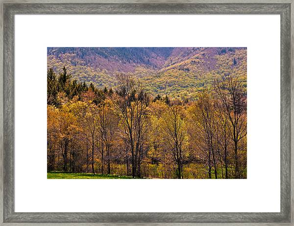 Catskill Color Framed Print