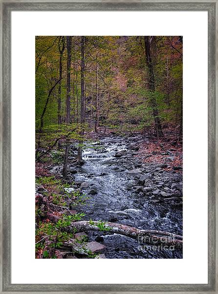 Cedar Falls Creek Framed Print