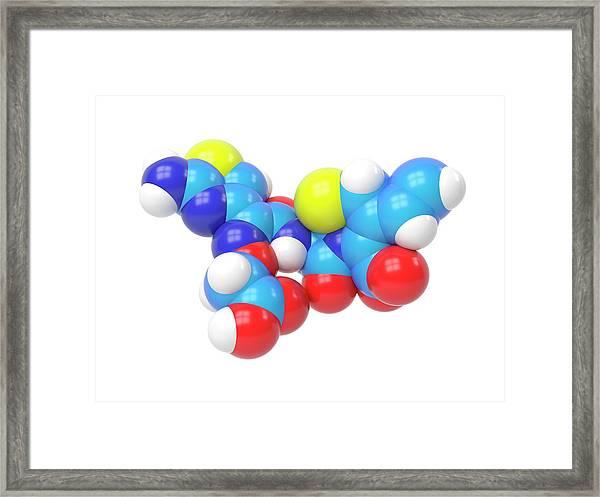 Cefixime Molecule Framed Print by Indigo Molecular Images