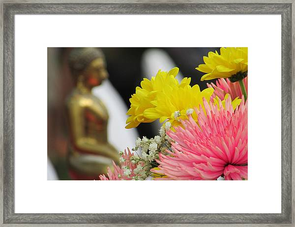 Celebrating The Thai New Year Framed Print