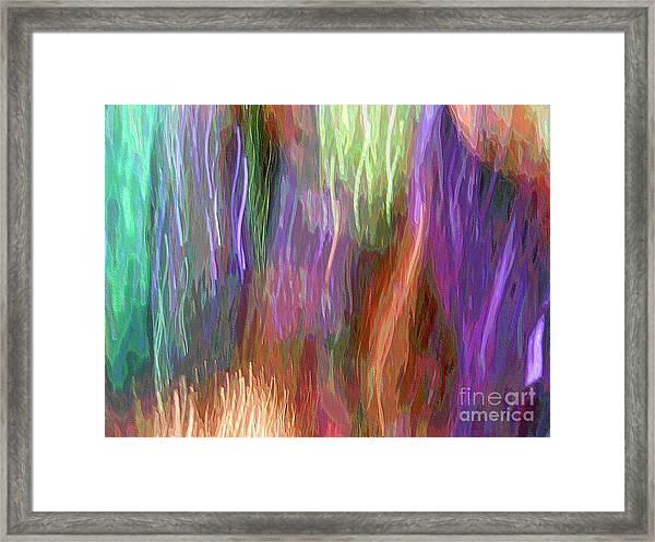 Celeritas 12 Framed Print