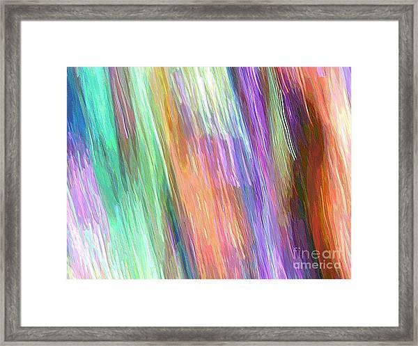 Celeritas 19 Framed Print