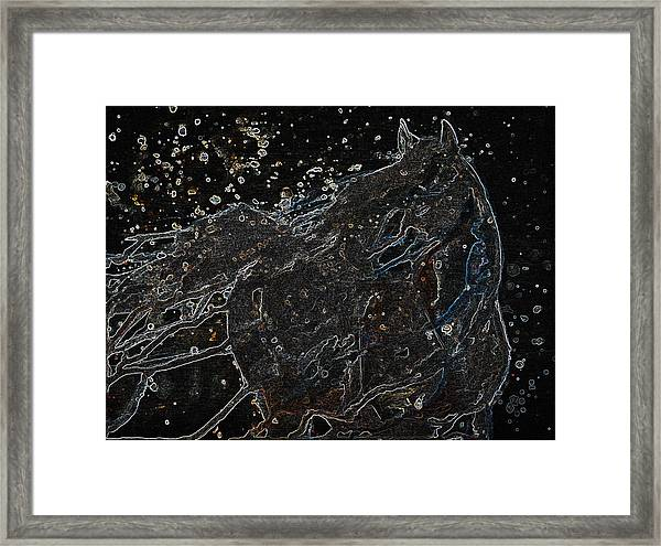 Wild Horse Of The Skies Framed Print