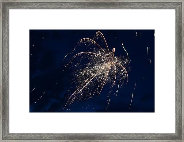 Celestial Octopi Framed Print