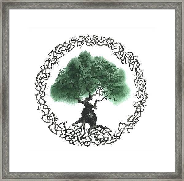 Celtic Tree Of Life 2 Framed Print