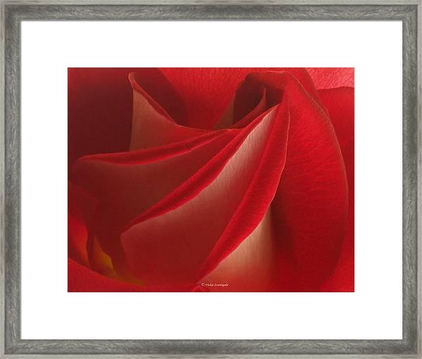 Center Folds Framed Print