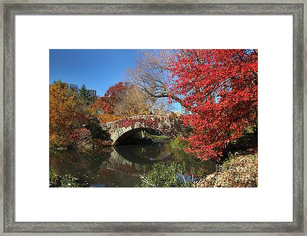 Central Park In The Fall-1 Framed Print