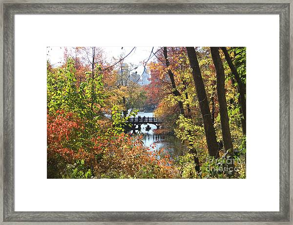 Central Park In The Fall-2 Framed Print