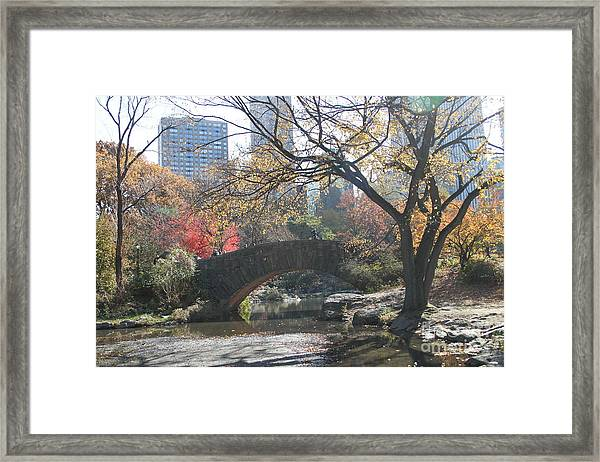Central Park In The Fall-3 Framed Print