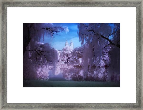 Central Park Lake Willows Color Framed Print
