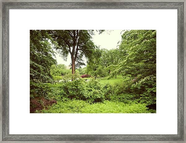 Central Park New York City Framed Print
