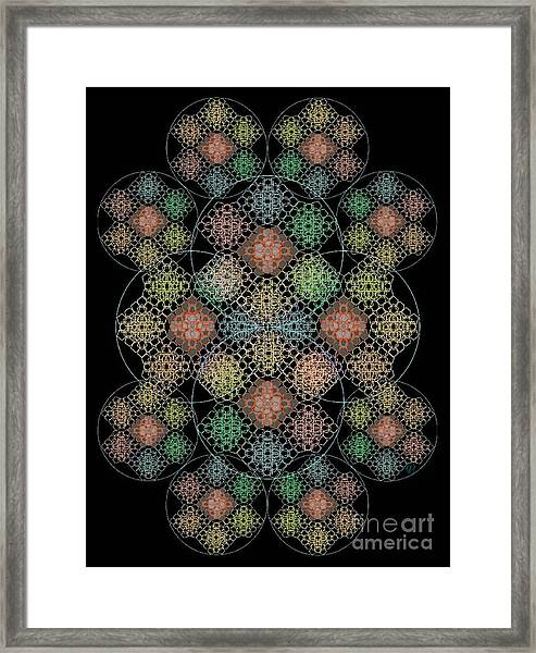 Chalice Cell Rings On Black Lt33 Framed Print by Christopher Pringer