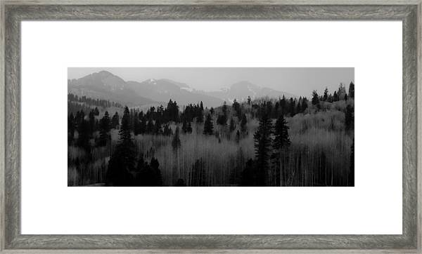 Chama Trees Framed Print