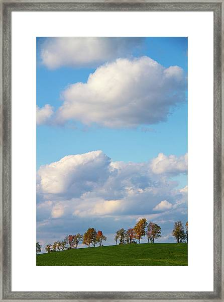 Changing Fall Trees On A Hilltop Framed Print