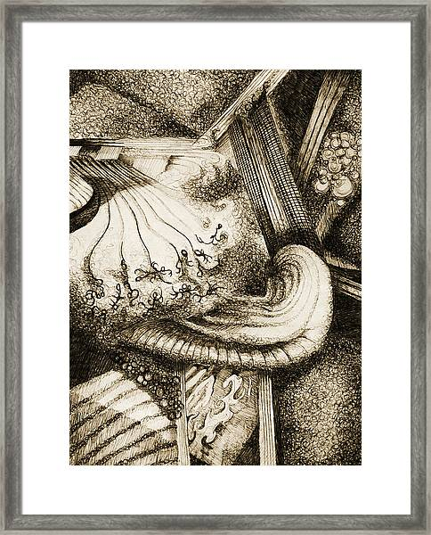 Chaos Framed Print by Sara Coolidge