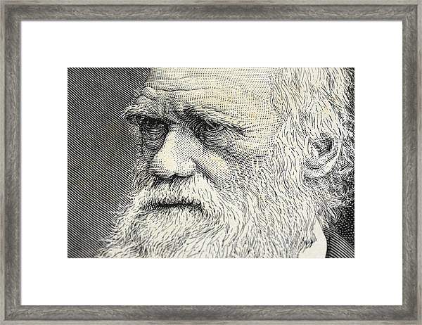 Charles Darwin Portrait Engraving Framed Print by Rolbos