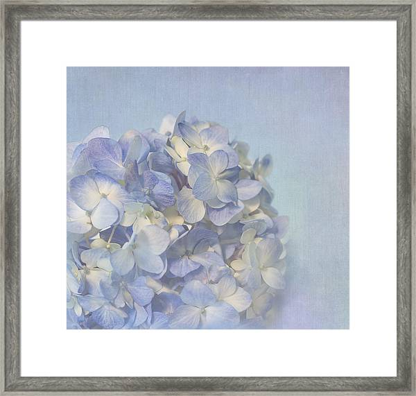 Charming Blue Framed Print