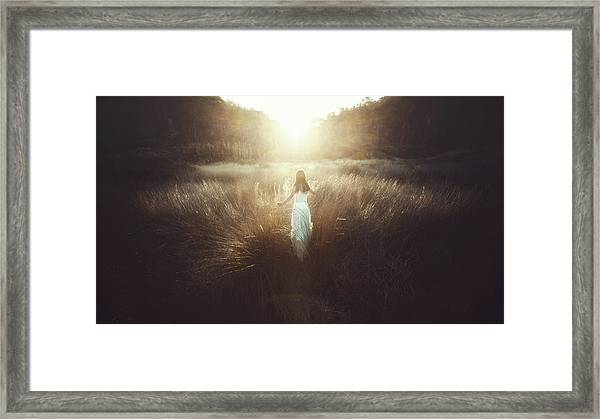 Chase The Sun Framed Print by Terry F