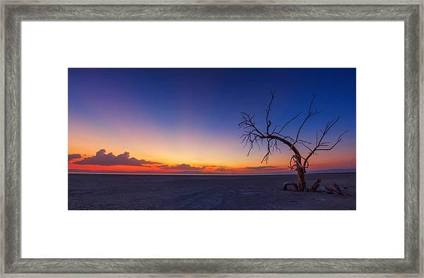 Chasing The Sun Framed Print