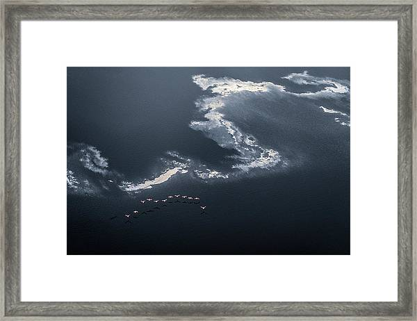 Chasing The Waves Framed Print by John Fan