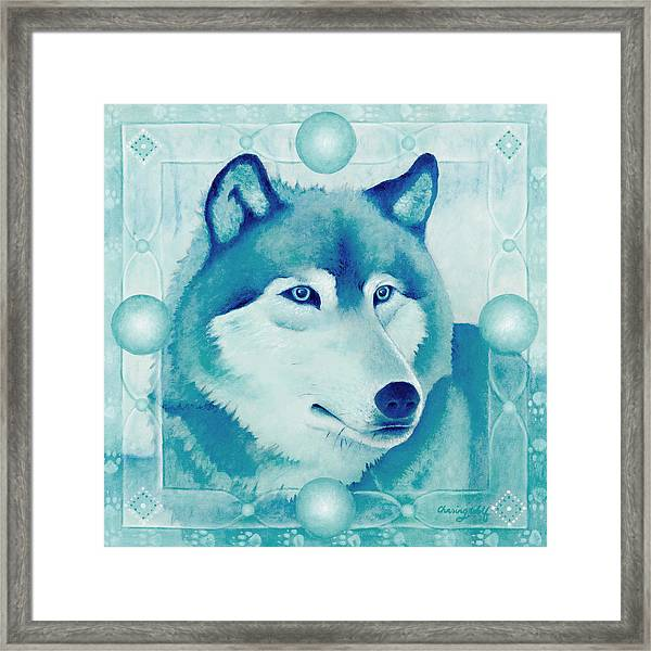 Chasing Wolf Framed Print