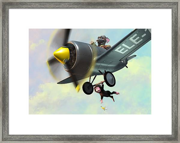 Cheeky Monkey Hanging From Plane Framed Print