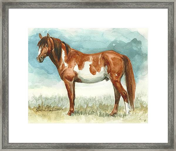 Cherokee Wild Stallion Of Sand Wash Basin Framed Print