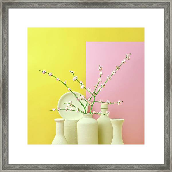 Cherry Blossom Popcorn In Monochromatic Framed Print by Juj Winn