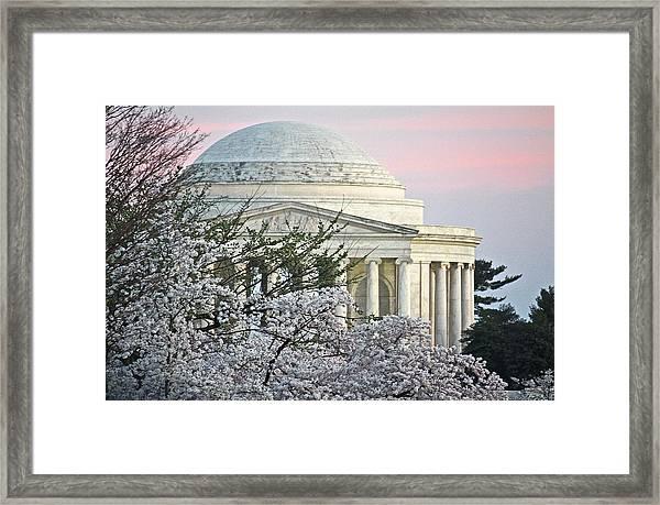 Cherry Blossom Sunset Framed Print