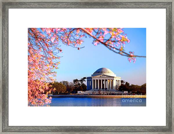 Cherry Jefferson Framed Print
