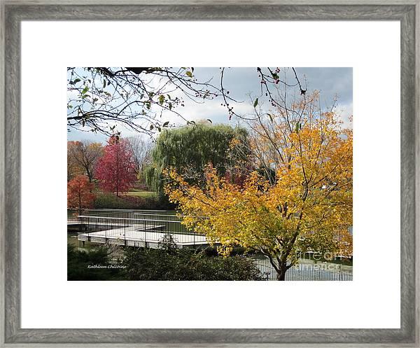 Chicago Color Framed Print