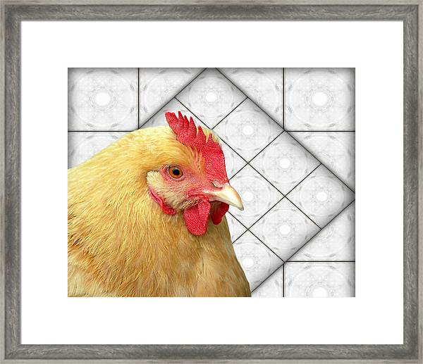 Chick-a-dee In The Kitchen Framed Print