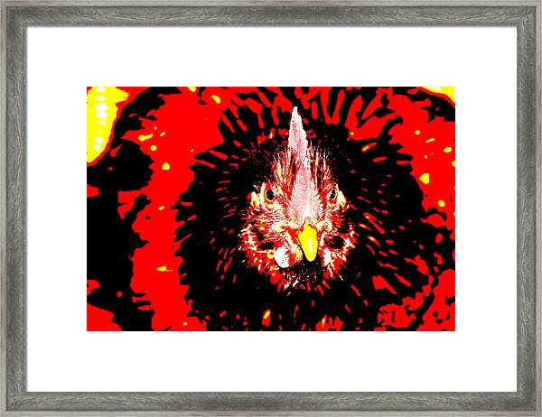 Chicken Head Framed Print by Frank Savarese