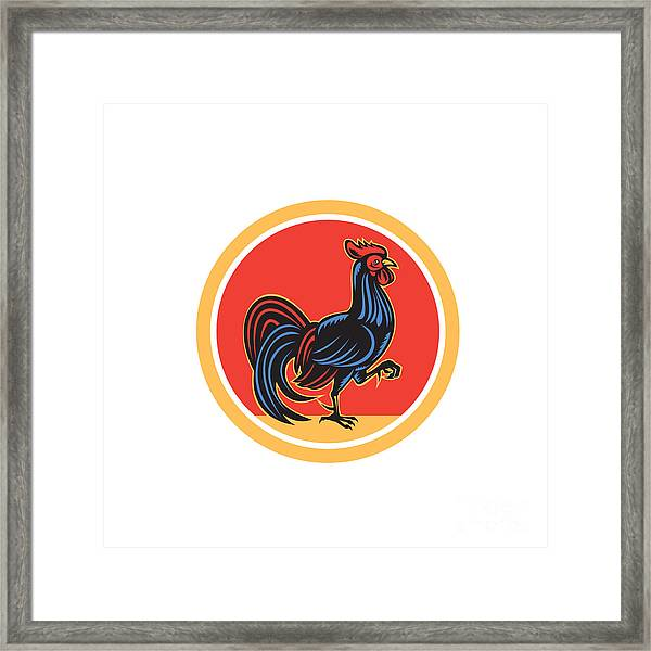 Chicken Rooster Marching Walking Circle Retro Framed Print by Aloysius Patrimonio