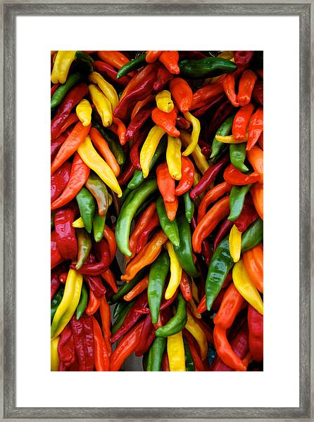 Chile Ristras Framed Print