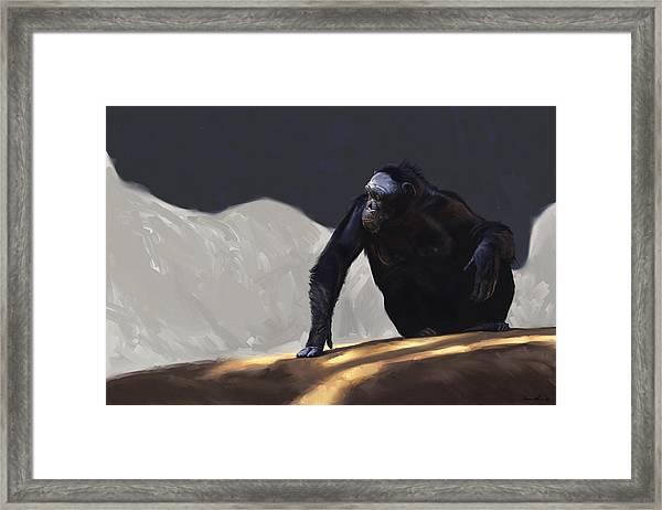 Chimp Contemplation Framed Print