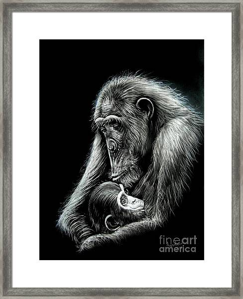 Chimp Love Framed Print