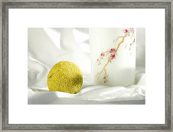 Chinese Orange. With A Vase Framed Print