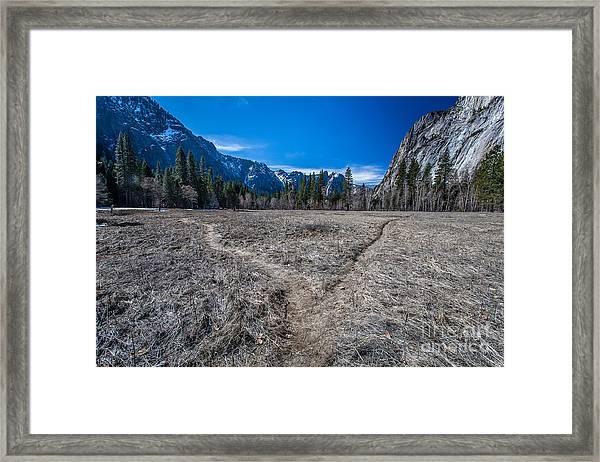 Choose Wisely Framed Print
