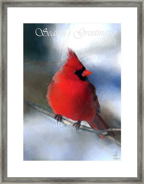 Christmas Card - Cardinal Framed Print
