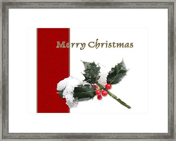 Christmas Holley Framed Print