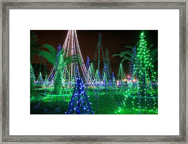 Christmas Lights 2 Framed Print